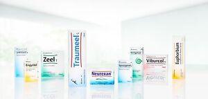HEEL Metro Adnex   10 Amps Homeopathic Remedies