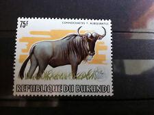 GNOU - BURUNDI - WWF - CONNOCHAETES ALBOJUBATUS -