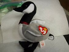TY Beanie Babies - Rare DOB MARCH 29, 1998 LOOSY THE GOOSE   (B-1111)