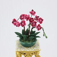 1:12 Puppenhaus Miniatur Staffelei Topfpflanze Blumendekoration Traumhaus best