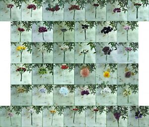 Artificial Assorted Stem Flowers Your Choice New