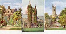 Set 6 Oxford Aldens Garden Series J Allen Shaffrey pcs unused Ref M525