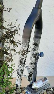 Mtb carbon Gabel 29 tapered 1/8 1/5 custem paint 560g Starrgabel