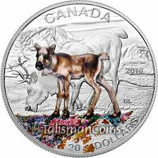 Canada 2016 Baby Animals #10 Mother Caribou and Young Calf $20 Pure Silver Proof