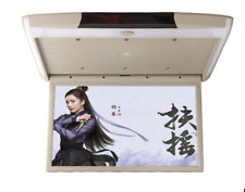 """17.3""""Car Roof Monitor LCD Flip Down Screen Overhead Video Display With IR/FM USB"""