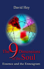 Hey, David .. The 9 Dimensions of the Soul Essence and the enneagram