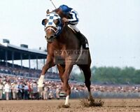 """SECRETARIAT"" 1973 KENTUCKY DERBY RACE HORSE TRIPLE CROWN - 8X10 PHOTO (FB-300)"