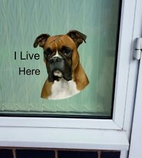 """Boxer """"I LIVE HERE"""" Window/Door sticker Decal"""