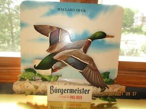 RARE Vintage 3D Burgermeister Cardboard Beer Sign with Mallard Duck 1950s