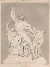 Drawing. Group of the Laocoon. BRITANNICA 1860 old antique print picture