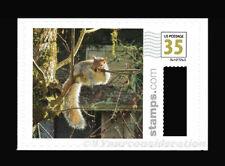 "2020 Photostamps.com™ .35¢ ""Tree Hammock Squirrel"" Custom Cvp Postage Mnh S/A"