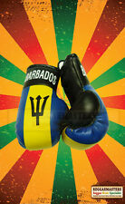Barbados Flag Mini Boxing Gloves -HANG IN YOUR CAR-  ROOTS & CULTURE