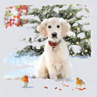 Pack of 6 Snow Puppy Charity Christmas Cards Supporting  Multiple Charities