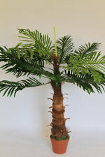 Artificial Plants - Artificial Coco Palm Tree 1m Tall With Pot