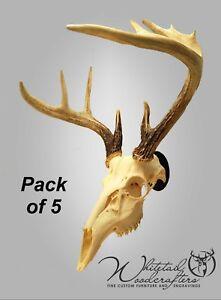 5 Pack Metal European Mount Deer Skull Hanger Bracket Hook