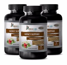 Ginger root - KIDNEY SUPPORT COMPLEX 700mg - immune support tablets - 3 Bottles