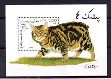 Afganistan Fauna Gatos año 1997 (AY-483)