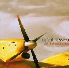 Nighthawks As the Sun Sets