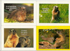 Lot 4 cartes postales marmotte alpes montagne