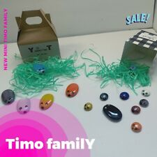 Timo Family (1)PET ROCKS Each Box, All The Fun Of Having A Pet.(Blue Sky COLOR)