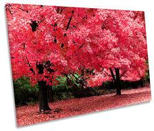 Rosa De Otoño árbol único LONA pared arte Foto impresión