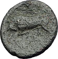SYRACUSE in SICILY Tyrant AGATHOKLES 317BC Ancient Greek Coin RARE R1 i63726