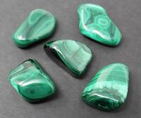 1 Medium Malachite Tumbled Stone (Crystal Healing Reiki Gemstone Metaphysical)