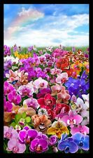 Orchids Digital Gardens Flowers Large Panel 100% Cotton Quilting Fabric