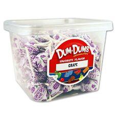 Dum Dum Pops Favorite Grape Flavor TWO Big 1 Lb Tubs! Lollipop Suckers Dum Dums
