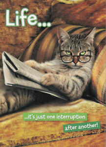 Cat Life...It's Just One Interruption After Another! Greetings Card birthday
