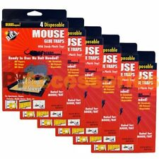 Pack of 24 D.O.A. Disposable Glue Traps for Mice Rats Mouse Super Stick Tray LOT