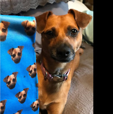Custom Personalized Socks All-Over Face Family Pet Baby Kids Photo Present Gifts