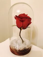 Beauty & The Beast Disney Christmas Red Rose Glass Dome Snow Cake Topper Wedding