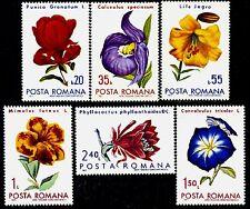 1971 Cactus,Lily,Pomegranate,Morning-glory,Slipperwort.,Flowers,Romania,2940,MNH