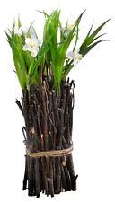 Mini Flowering Twig Bundle - White Narcissus