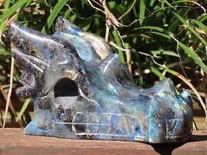 Large Polished Labradorite Dragon Skull Crystal Display Piece ~ Hand Carved