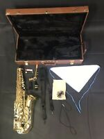 Costzon Professional Gold EB Alto Saxophone