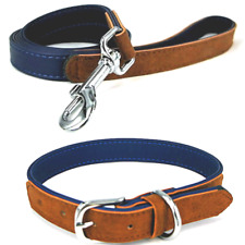 Rosewood Luxury Dog Collars & Leads Soft Strong & Comfortable Blue / Tan
