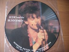 """echo  and the bunnymen 12"""" interview picture disc vinyl lp"""