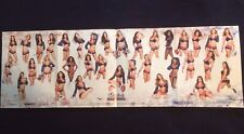 New England Patriots Cheerleaders poster, NEW, 2017, 34 X 11, AWESOME, GO PATS!