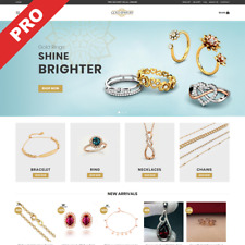 GOLD JEWELRY STORE | Turn-Key Dropshipping Website | Business For Sale