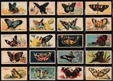 More details for player (john) - 'butterflies (girls)' - complete set