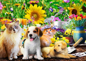500 Pcs Puzzle Spring Sunflower Pet Cats Dogs Jigsaw Adult Kid Educational Toys