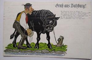 Gruß aus Salzburg, Stier, 1915 (50933)