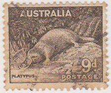(PDX243) 1938 AU 9d platypus (J)