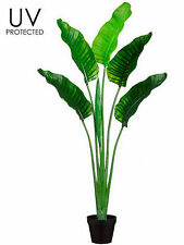 One 5 foot Outdoor Artificial Bird of Paradise Palm Tree UV Rated Potted Plant