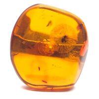 Einer Fern Denmark Vtg Sterling Silver Ring 925 Size 7 Baltic Amber Modernist