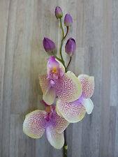 Orchidee Phalaenopsis Seidenblume L 63 cm creme lavendel rose 182145 F1