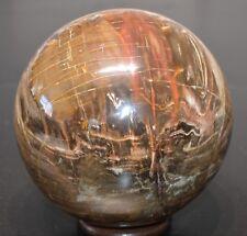 Sphère - Bois Fossile avec quartz 4,6 Kg - Natural round ball Petwood