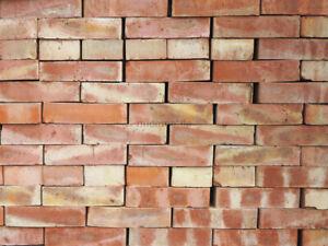 Backsteine gelb bis rot Ziegelsteine Mauerziegel bunte Vollziegelsteine Landhaus